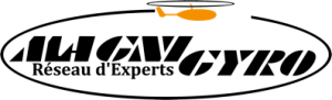 Logo MagniGiro Reseau